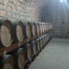 aging barrels of Yunnan Wine
