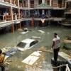 Absolute tsunami damage
